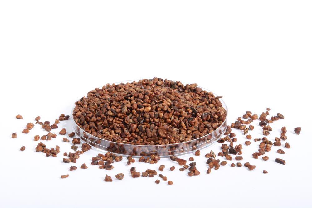 Éclats de cacao caramélisées