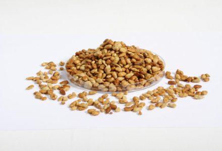 Graines de Tournesol Caramelisees