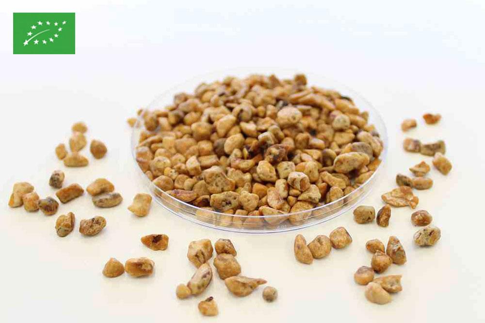 Organic caramelised 2/6 mm hazelnuts pieces